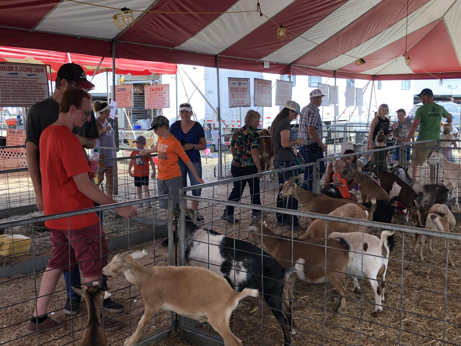 People visit a petting zoo during the recent Eastern Idaho State Fair in Blackfoot. Idaho Farm Bureau Federation helped sponsor the display, which used animals to help educate people about agriculture.