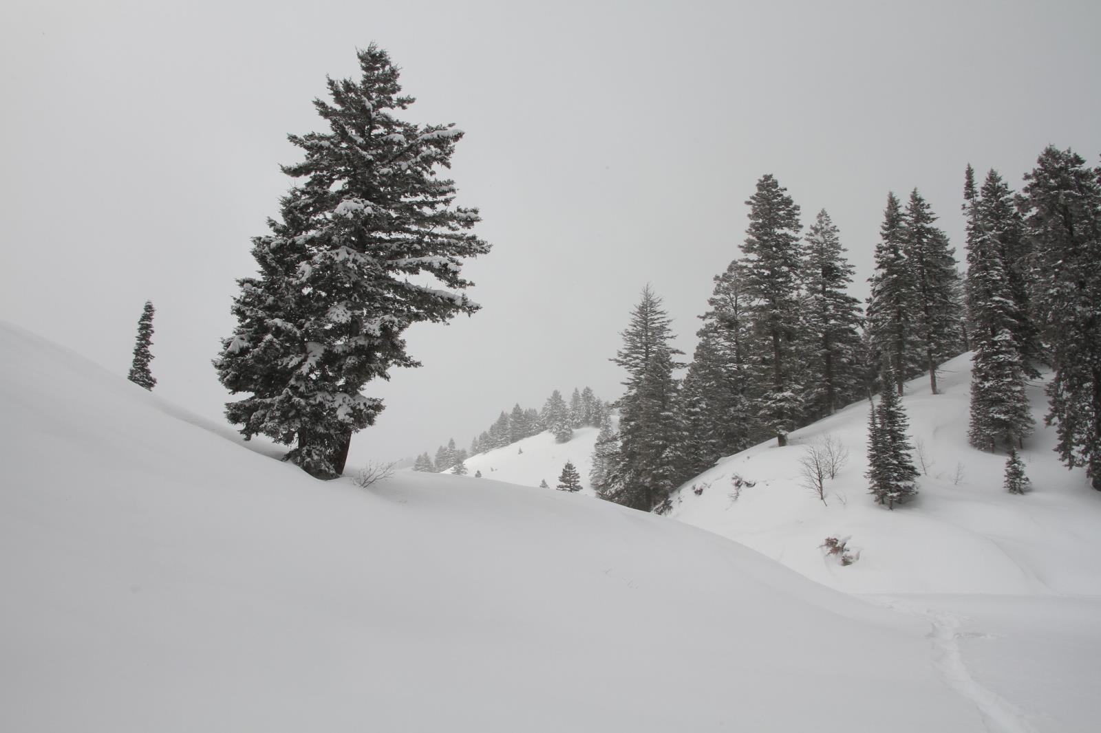 The Old Farmer's Almanac predicts above-normal snowfall throughout Idaho, Montana and Wyoming during the upcoming winter.