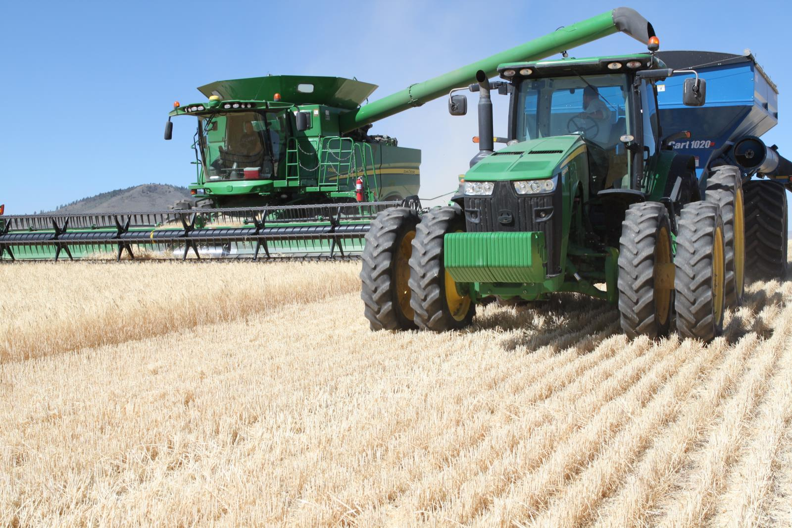 Barley is harvested in a field near Soda Springs in September. USDA's second round of coronavirus farm relief payments are expected to help more Idaho farmers, including barley producers.